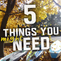 Featured-Sq-5things